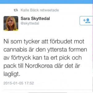 Sara Skyttedal cannabis