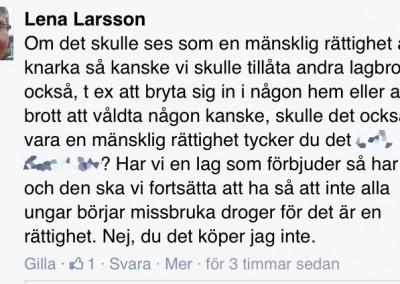 Lena Larsson AMD